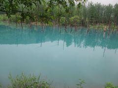 新緑の北海道(13)【美瑛】雨だけど青い池!オープンしたばかりの売店で青い池プリンを