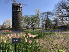 2019.5 恒例、札幌の桜巡り「モエレ沼公園&百合が原公園」