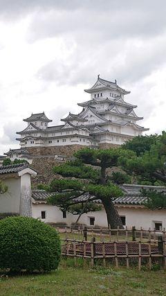 日本一大きなお城、姫路城