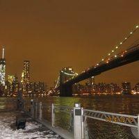 真冬のニューヨーク(2014)?おのぼりさんの兄妹旅行