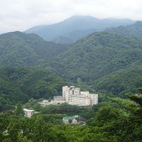 2019年6月神奈川県七沢森林公園を歩き、七沢温泉「盛楽苑」宿泊。横浜の三渓園を見学し、中華街を歩き老舗の聘珍樓で夕食を戴きました。