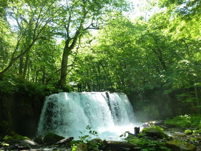 はじめての東北旅行3泊4日の旅、3日目。十和田湖で乙女の像ごっこ、奥入瀬渓流で癒される。