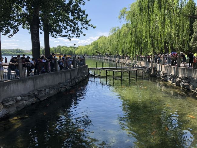 4泊5日の北京旅行<br />2日目、観光初日。朝からゆっくりして街歩きをしようと思っていたけれど、北海公園でほとんど1日が終わってしまった。<br /><br />2019.6月8日(土) 出発①https://ssl.4travel.jp/tcs/t/editalbum/edit/11505135/<br />        6月9日(日)北海公園、鼓楼②=本旅行記<br />        6月10日(月)慕田峪長城 ③<br />        6月11日(火)故宮、前門 ④<br />        6月日12(水)帰路 ⑤