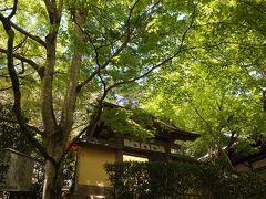 新緑の京都 二日目【2】 大原散策、寂光院・青もみじの三千院