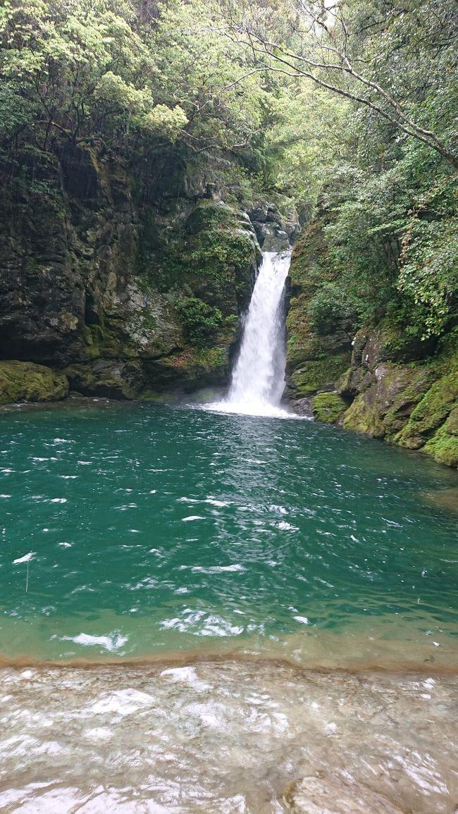 3人家族+家内の友人で四国へ行った際の様子です。<br /><br />旅行のメインは2日目の祖谷の里。そこから道後温泉、しまなみ海道、淡路島などどこへ抜けるか検討し、結果、高知→松山となりました。旅程の概要は以下の通り。<br /><br />4/29<br />NH531 羽田7:45-高松9:00<br />高松空港-中野うどん学校-金刀比羅宮-祖谷の里<br />5/1<br />祖谷の里-フォレストアドベンチャー祖谷-かずら橋-小便小僧-小歩危-大歩危-高知<br />5/2<br />高知-桂浜-にこ淵-中津渓谷-松山空港<br />NH1650 松山19:15-伊丹20:15<br />5/5<br />新大阪-東京
