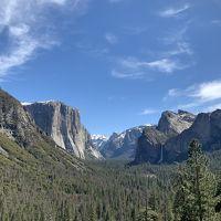 サンフランシスコ・シアトルひとり旅 ②3日目 ヨセミテ国立公園日帰りツアー
