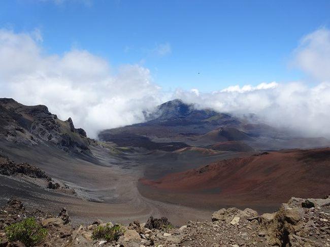 だんなさまの勤続○年のごほうび休暇。<br />2月にモルディブ旅行を計画してたけど、母の入院騒動で中止に。<br />リベンジ旅行は5月と決定!<br />残念ながらモルディブは雨期(^^;)<br />ということで…ハワイで行ったことのないマウイ島に決定!!<br /><br />14年ぶりの海外旅行。<br />初めてのマウイ島。<br />初めての海外レンタカー。<br />いつもはホテルステイの私たち、初めてのアクティブ?!旅行計画<br /><br />どんな旅になるのかな。o@(^-^)@o。<br /><br />わくわくドキドキで関空からダニエル・K・イノウエ国際空港へ。<br /><br /><br /><br />