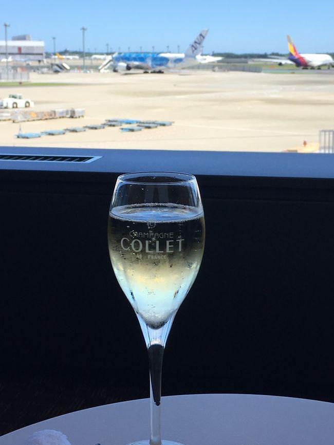 SFC会員のステータスしかない私ですが、ANA特典航空券を使ってファーストクラスに初搭乗しました。頑張ってマイルを貯めた甲斐がありました!<br /><br />すでにビジネスクラスは体験済みでしたが、ビジネスクラスとは、やはり違う特別感。またマイルを頑張って貯めよう!と思える搭乗でした。成田空港到着、チェックイン、スイートラウンジからレポートしています。