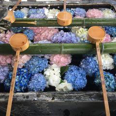 京の週末 紫陽花をもとめて西山へ 前編 ~眼の観音様 柳谷観音 楊谷寺~