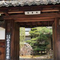 京都平成47 妙心寺-塔頭・桂春院を訪ねて ☆隠された茶室-既白庵があり