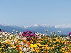 初夏の信州旅【2019.6】…信州花フェスタとパワースポット《1日目》