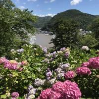 伊豆高原&伊豆下田旅行、下田東急ホテルに泊まってあじさい祭へ