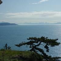 ひとり旅 -  焼津旅行