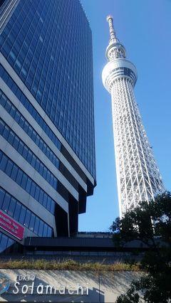 東京ぶらぶら~2017年・スカイツリーとハリネズミ
