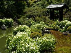 京の新緑の季節にめぐる花探訪!! 京都御三家・炭屋旅館の懐石料理と瓢亭の朝がゆ