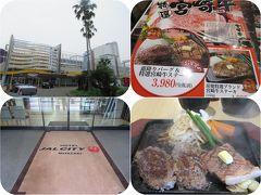 光あふる南九州(3)宮崎牛とホテルJALシティ宮崎
