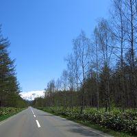 旭川と札幌 〜あんなところ、こんなところ〜