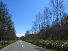 旭川と札幌 ~あんなところ、こんなところ~