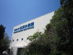 和歌山 4(白浜水族館・とれとれ市場・闘鶏神社・湯浅丸新本家)