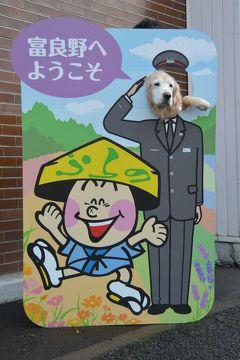 Gレトリバーとフェリーさんふらわあ ふらのウィズペットルームで行く北海道! 5日目(富良野チーズ工房・ふらのワインハウスなど)