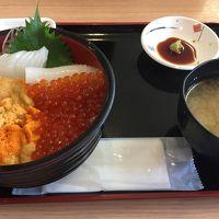 北海道へ家族旅行 レンタカーで函館・ニセコ・積丹・小樽 � うに〜