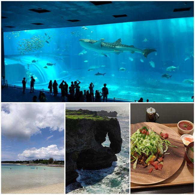レンタカーを使わない沖縄一人旅後編。<br />2~3日目は美ら海水族館や漫湖、万座毛を巡った。<br />幸い天気にも恵まれ、美しい沖縄の風景を眺めつつ、美味しい料理を食べてノンビリ過ごすことができた。<br />また月曜から夜ふかしでお馴染みの嫁ニーさんにもお会いした。<br /><br />結論から言うと、沖縄はレンタカーがなくても十分まわれる!ただ恋人と来たほうがより楽しい!