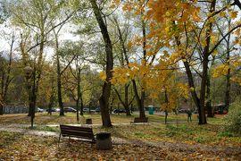 紅葉で黄金に輝く秋のポーランド堪能旅行 【18・完】ワルシャワ 街歩き ~ 帰国