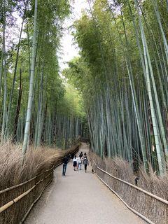 新緑の嵐山を満喫(後編:嵐山大探検)