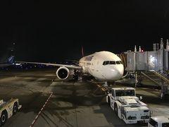 イスタンブール新空港 ~ターキッシュエアラインズ・イスタンブール乗換え~