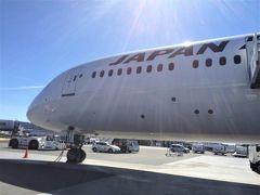 JALでストックホルムマラソン&魅惑の初ロシア(2)初日ヘルシンキ到着まで♪