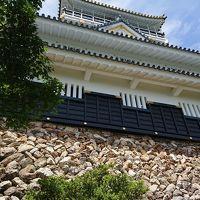 【日本100名城】岐阜城へ。昆虫博物館も素敵だったよ。