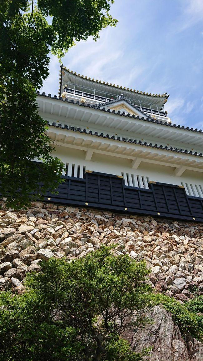 100名城スタンプラリーで岐阜城へ。<br />公園をぶらりとしていたら、昆虫博物館を発見。とても充実していました。