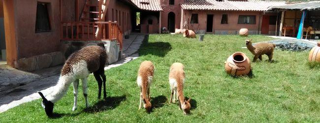 南米ツアー シニア夫婦ペルーとボリビア...