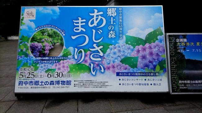 府中市郷土の森で6月30日まで開催されていました、「あじさい祭り」に行ってきました。実は、あじさいを見に行きました。大きな公園なので、たくさんのあじさいが咲いていました。