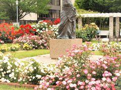 本郷給水所公苑の薔薇がきれいでした♪