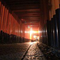 京都の初夏 - 深緑と苔と夜景【5】夜に訪れてみた伏見稲荷大社