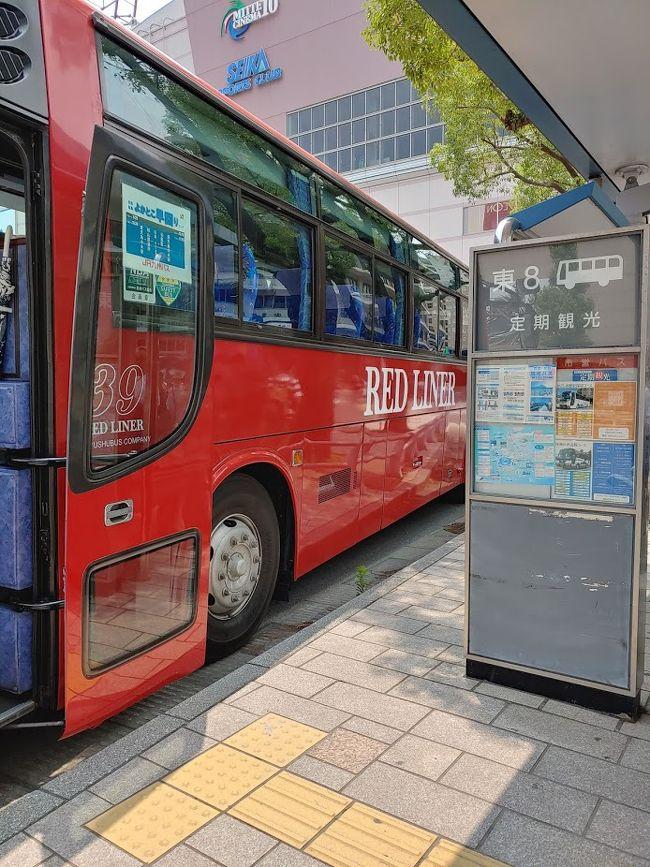 桜島と仙巌園の半日午後のバスツアーに参加しました。バスのまま船に乗ります。