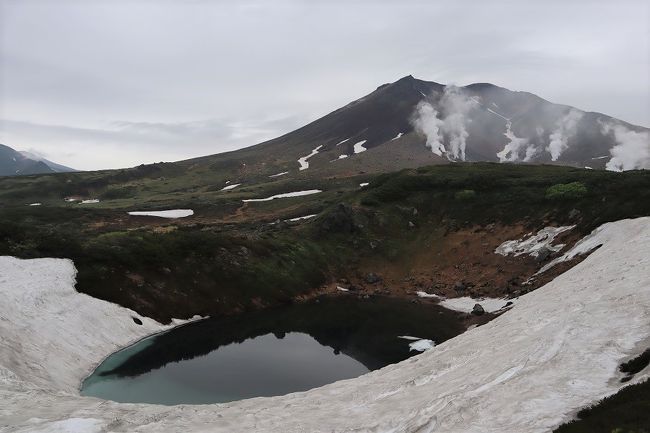 1泊2日で旭岳温泉に泊まり、大雪山・旭岳と、富良野のラベンダーを観光。<br />1日目は、旭川空港から昼前に旭岳山麓に着き、ロープウェイで中腹へ。濃霧注意報が出ている中司会はほぞゼロ。高山植物だけに癒されながら、1時間、雪上のトレッキングをして2時にはホテルにチェックイン。あとは旭岳温泉でのんびり。<br />2日目は、朝食前、6:30発のロープウェイ始発で、天気予報に少し期待して、再び旭岳中腹へ。最初は前日と同様に視界ゼロでしたが、歩き始めてすぐに視界が開けてきました。多くの噴煙が轟音とともに吹き上げられる旭岳を目の前に見ながら、トラッキングを楽しみました。<br />9:00には山麓に戻り、ホテルで朝食をとって、富良野へ。。。