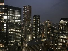 近場でのんびりホテルクラブラウンジステイ~ヒルトン東京~