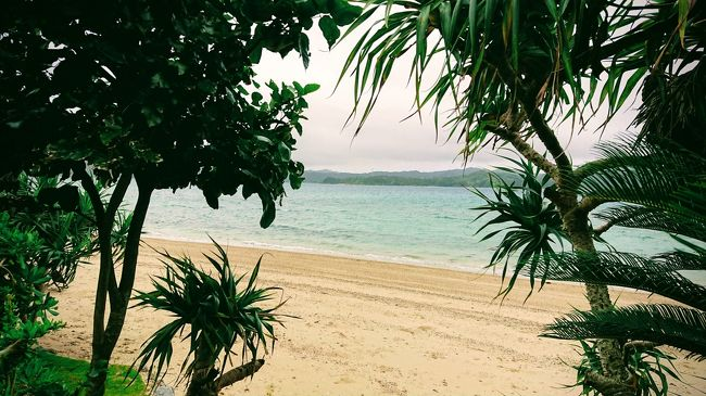 まとまったお休みをいただいたので、初めて奄美大島に行ってきました。<br />沖縄より梅雨入りが早かったのに、梅雨明けが遅い奄美大島…<br />雨女なので今回の旅も大雨警報中(笑)<br />今回も雨女目線・ご飯重視でお宿をチョイス。<br />絶景も半減…ただただ飲みすぎ、食い倒れた日々です(/ω\)<br /><br />