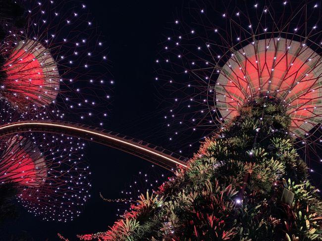 三が日だけど「春の海」とか聞こえてこない常夏シンガポール。辛い辛い敵陣SFC修行で来たとはいえ、折角なので何か真新しい経験を。<br /><br />ふと思い立ち、ご当地しょう油の蔵見学、そして5度目のシンガポールにして初めて夜のガーデンズバイザベイで新年会のような事をするお正月です。