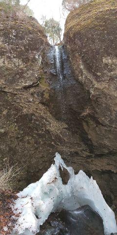 まゆ丸、丸岩を登る