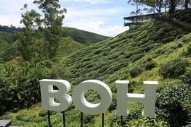 マレーシアドライブ旅行+シンガポール・ビンタン島&サンフランシスコ16日間 9日目 高原リゾート★キャメロンハイランド(2)