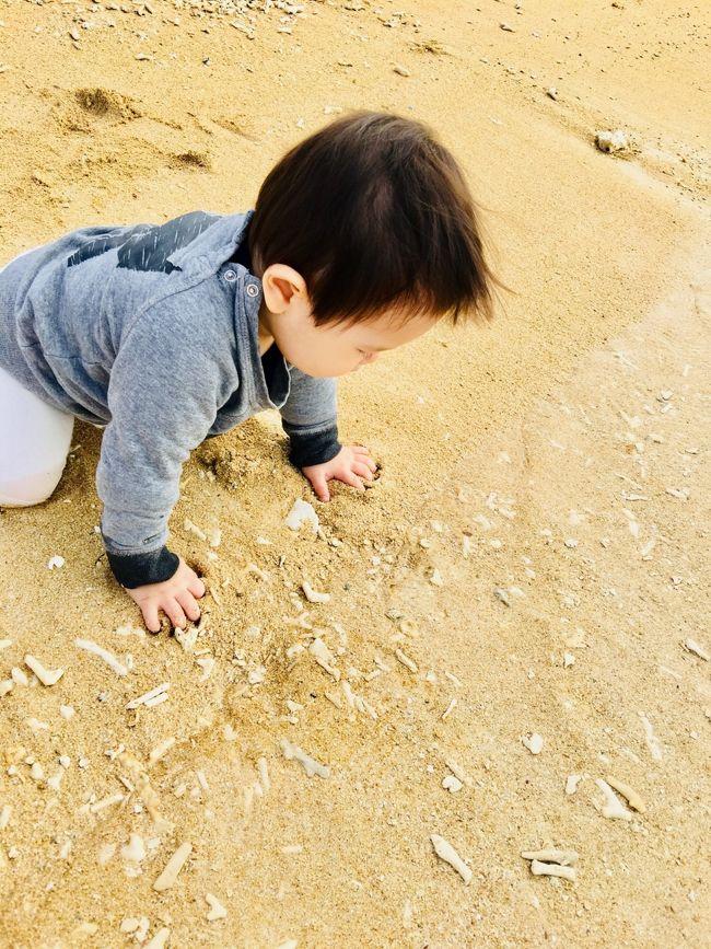 無事息子が1歳を迎え<br />子供と2人で久々に沖縄に帰りました<br />(本当の実家ではないけれど、帰省気分です☆)<br /><br />逢いたい人 懐かしい風景 食べたいもの 美しい海<br />息子にも一緒に感じてもらう旅<br />息子をみんなに紹介する旅<br />自分へのご褒美の旅<br />これからの活力となる旅<br /><br />基本的には友人との約束以外はノープラン<br />子供のリズムに合わせて行動してました<br /><br />飛行機はANAの特典航空券<br />帰りは未定(旦那さんも了解済み&プチ家出ではありません)<br />いったん2週間位に宿を予約していたのですが<br />結局飛行機も宿泊先も少し延長して月末まで滞在しました<br />ーーーーーーーーーーーーーーーーーーー<br />この旅行記は2019年7月、ベトナムの旅行記の後に書きました。<br /><br />ベトナム旅行で新しい携帯になったので<br />PCから写真をUPしました。<br />顔付きの写真を加工するまで至らず<br />情報が抜けるような箇所もあるのですが<br />乳時期・ハイハイ時期の小さな子供と行く沖縄の人も多いと思いますので<br />ホテル情報は少ないのですが、食事場所など昔からの名店や子供大歓迎のお店も多く訪れましたので、少しでも役立つ情報を共有出来る事が出来ればと思います。