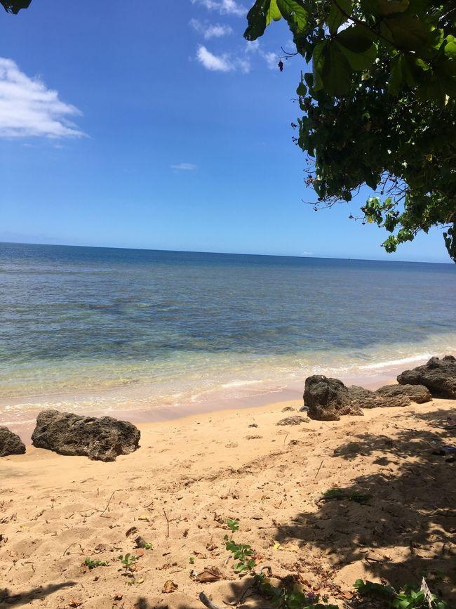 今年は早めに夏休みを取って、梅雨の日本を脱出!<br />カラッとしたハワイの気候を想像してたのですが、何だか蒸し暑い…。どうやら温暖化の影響のようです…。<br /><br />今回の旅のメンバーは、<br />じぃじ、ばぁば、息子(3歳11ヶ月)、私。<br />(パパは仕事のためお留守番)<br />ちょっとした事でヘソを曲げる息子…。<br />どうなることやら?!<br /><br />初のバケーションレンタル、バン貸切チャーターでの観光に出かけた1日目~2日目の記録です。