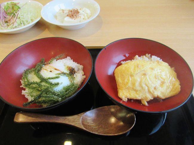 沖縄・令和最初の夏(6)アリビラ・佐和の朝食「和流膳とこめ食バイキング」