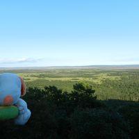 釧路市湿原展望台で湿原を西側から見る◆旅仲間と行く初秋の道東《その11》