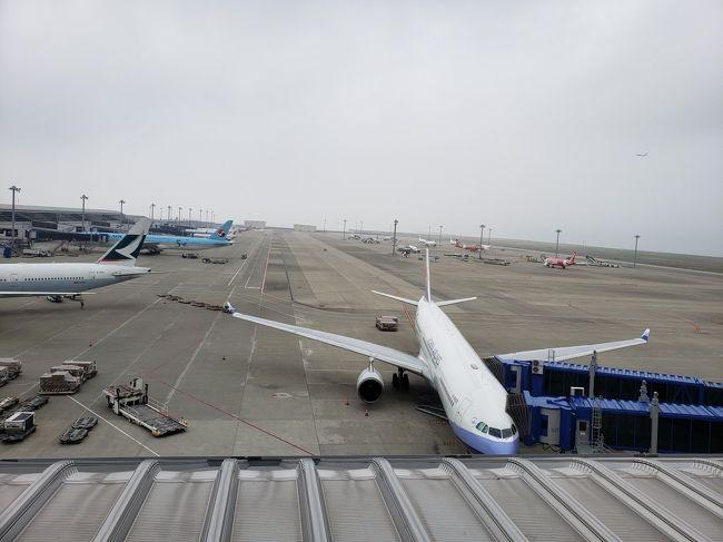 7月5日から7月7日まで、<br />5回目の台湾に行ってまいりました。<br />海外が初めてで、この旅行の為にパスポートを取った友人。<br />ずっと台湾に行きたいと言っていたので、二つ返事でOKと。<br />予約は5月末にJTBのwebで税等込みで一人46500円。<br />チャイナエアラインとホテルも指定のツアーでした。<br />本当は平日の安い期間に行きたかったのですが、友人はすでに働いているので、<br />なるべく土日にかぶせられるように組んだ結果が金曜日出発の2泊3日でした。<br /><br />主な日程<br />7月5日 CI151便で中部国際空港から台北桃園国際空港<br />7月6日 台北観光<br />7月7日 CI150便で台北桃園国際空港から中部国際空港<br /><br />ホテル:シーザーメトロホテル台北<br />新しいホテルで朝食付きで想像以上に良かったです。