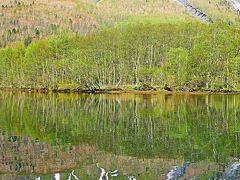 信州令和36 上高地a 大正池あたり 梓川が堰き止められ ☆穂高連峰くっきりと