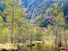 信州令和38 上高地c 田代池あたり 伏流水の泉/湿原 ☆六百山や霞沢岳を背景に